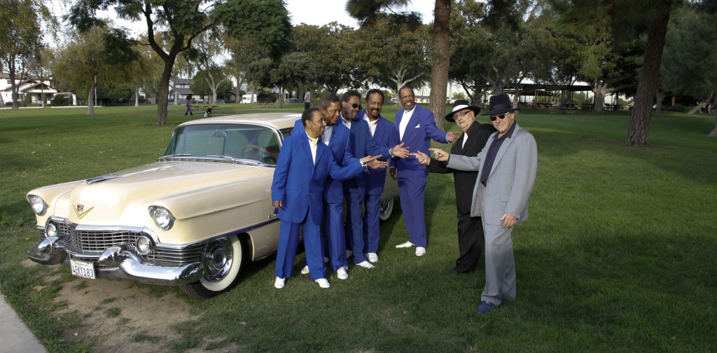 Sammy, Billy, Leon, Buddha, Darrell, Jersey Jack, Cad  2013